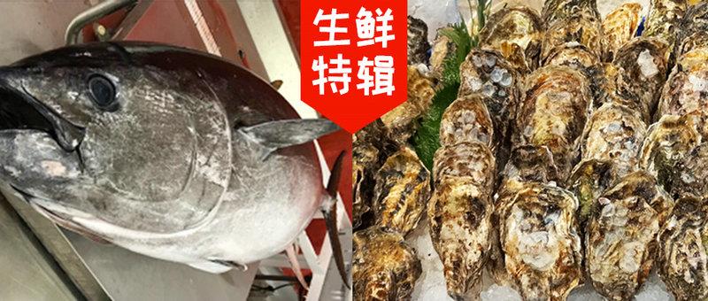 【生鲜特辑】大海的滋味 海の味